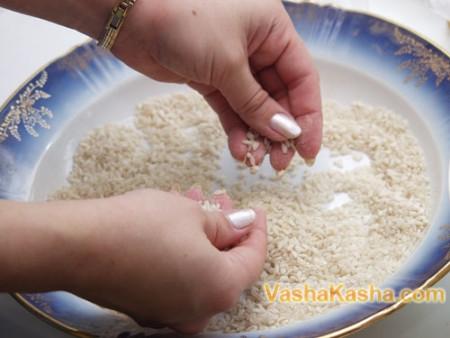рисовая крупа в тарелке