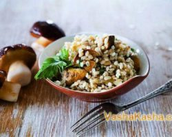 Recipe cooking in a slow cooker barley porridge