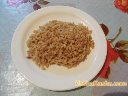 barley on a plate